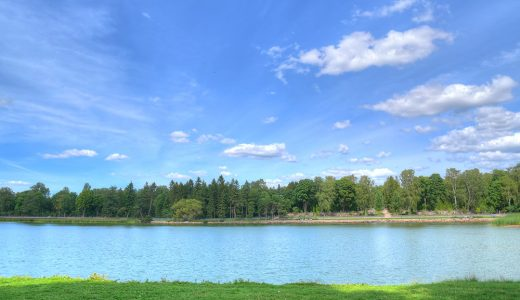 森と湖の国で過ごす「夏の家族ノマド」は想像以上に快適だった!in フィンランド